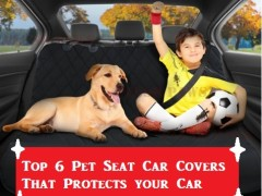 Top 6 Pet Seat Car Covers That Protects your Car Seats |Top Car Protective Accessories